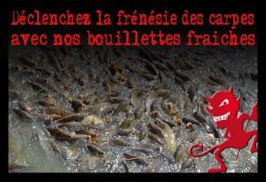frénésie(1)