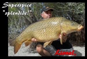 lionel 20